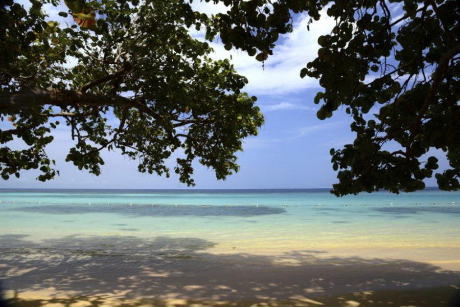 MSCオペラで行く今が旬のキューバ発カリブ海7泊8日