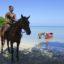 航空券込み!マイアミ発MSCシーサイドで巡るカリブ海7泊8日