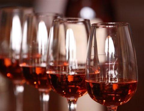 【ニース発】日本語プライベート ニースのワイナリー巡り≪ワインテイスティング付き≫