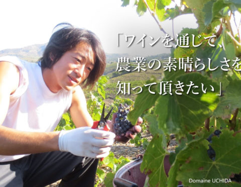 【12/11(金)21:00~(日本時間)】世界で活躍する日本人 オンラインワインセミナー
